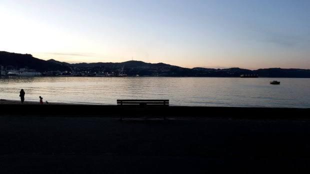 Oriental Bay at dusk